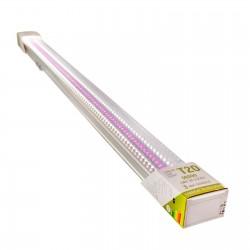 Tub LED T20 Fito Full...